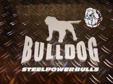 steelpower