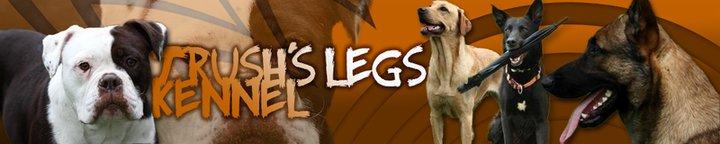 Trush's Legs Kennel France